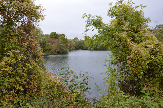 parc-de-choisy